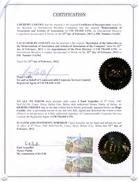 Сертификат - уменьшенная версия