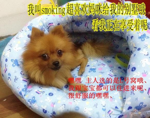 Домик для домашних животных