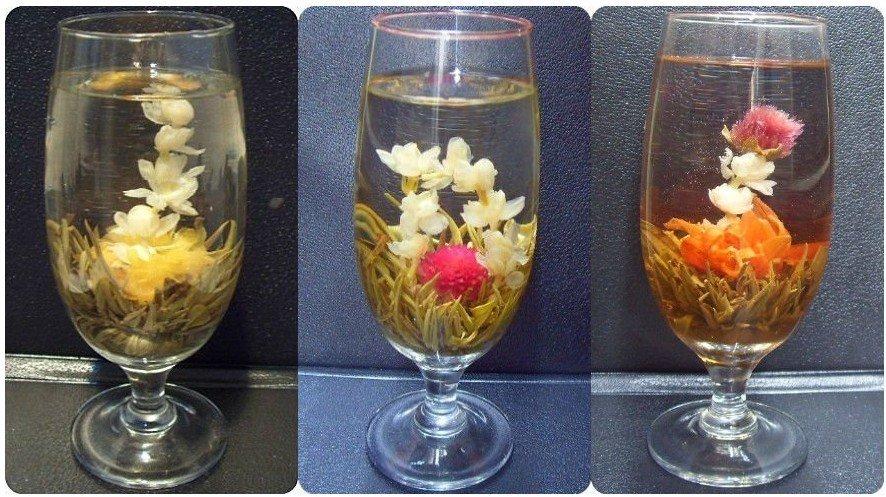 Цветущий чай, 16 видов