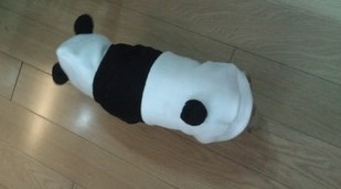 Костюм панды для домашнего питомца