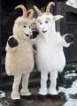 Ростовая кукла коза (2 шт)