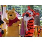 Ростовые куклы  мишка и тигренок