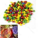 Цветные декоративные камешки в аквариум