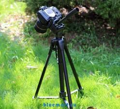 WT-3730 - Штатив-тренога для видеокамеры с панорамной головкой