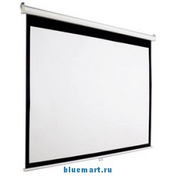 Проекционный моторизированный экран TTS (92