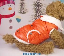 Утепленная жилетка для собаки