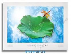 Yamet YMT-TV19 - телевизор, TFT LCD, 19