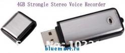 2 в 1 Цифровой диктофон + USB Flash, 4GB, WAV