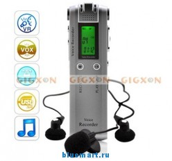 Цифровой диктофон, 4GB, LCD, USB, MP3, WAV