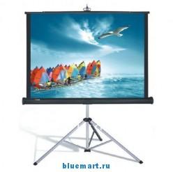 Проекционный штативный экран TP-100 (100