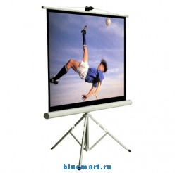 Проекционный штативный экран TP-80 (80