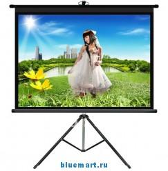 Проекционный штативный экран (120
