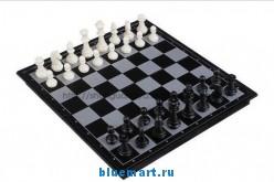 Комплект шахмат и шашек на магнитной доске